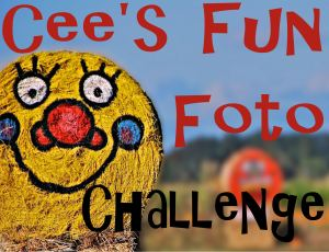 Cees-Fun-Photo