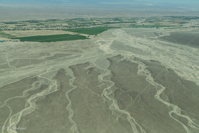 nazca lines-3