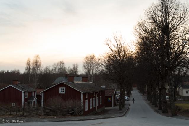 sol_torrvarpen-12
