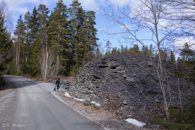 skogspromenad-8