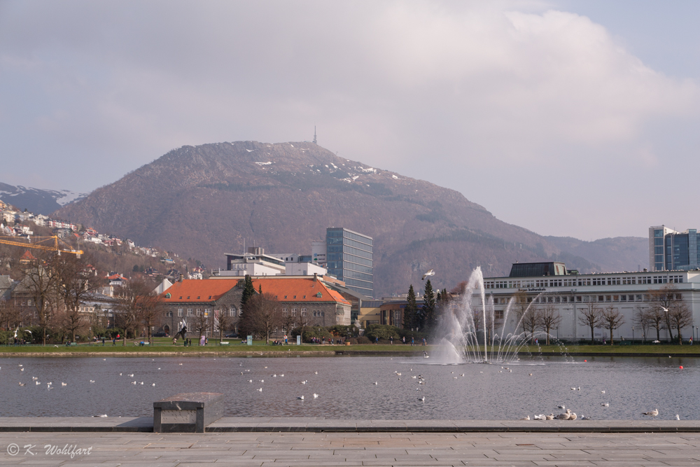 bergen norway-23