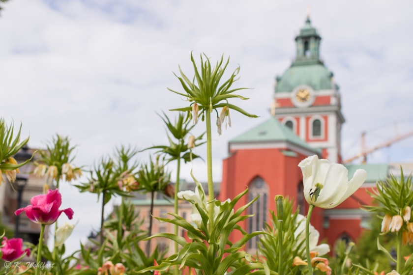 stockholm_travel_massive